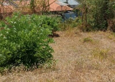 258386-land-for-sale-in-north-bali-6-794