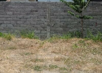 258396-land-for-sale-in-north-bali-2-794