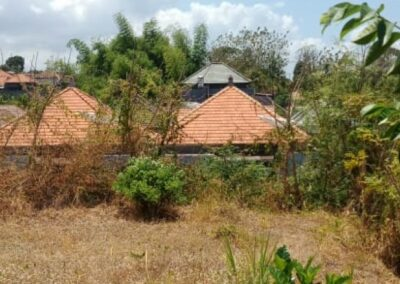 258396-land-for-sale-in-north-bali-5-794