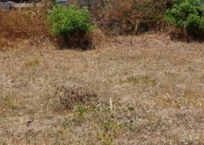 258396-land-for-sale-in-north-bali-6-794