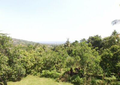 200088-land-for-sale-with-ocean-view-in-lovina-hills-3-794