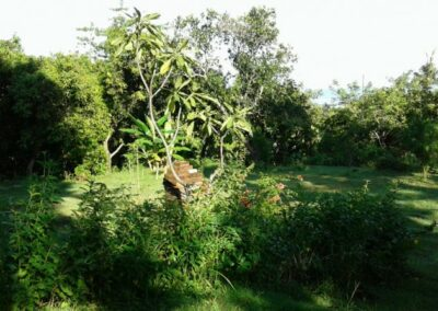 200088-land-for-sale-with-ocean-view-in-lovina-hills-4-794