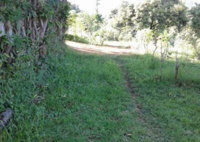 200088-land-for-sale-with-ocean-view-in-lovina-hills-6-794