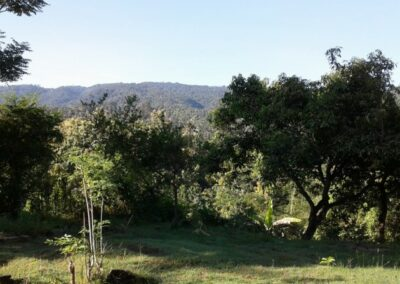 200088-land-for-sale-with-ocean-view-in-lovina-hills-7-794