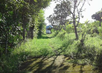 200088-land-for-sale-with-ocean-view-in-lovina-hills-9-794
